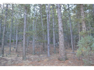 Lyons Residential Lots & Land For Sale: Moose Rd