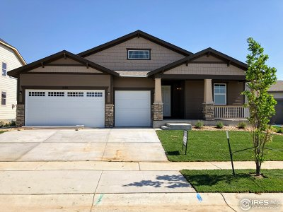 Berthoud Single Family Home For Sale: 648 Great Basin Ct