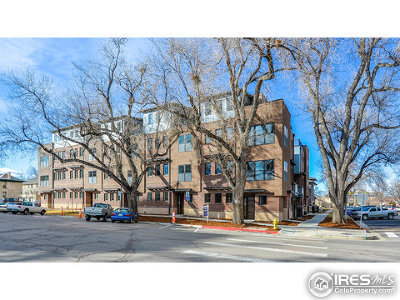 Fort Collins Condo/Townhouse For Sale: 252 E Olive St #7
