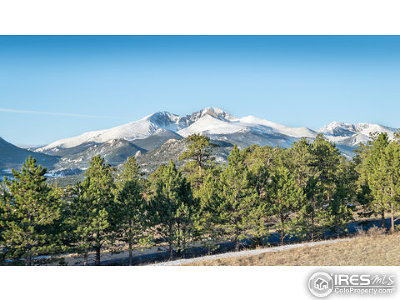 Estes Park Single Family Home For Sale: 510 Little Beaver Dr