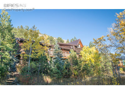 Allenspark Single Family Home For Sale: 275 Wagener Rd
