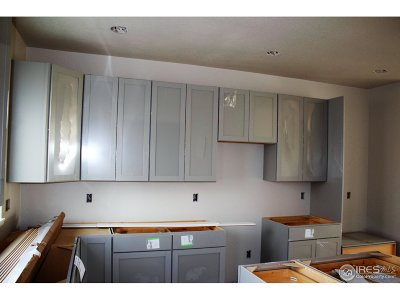 Berthoud Condo/Townhouse For Sale: 1128 Little Branch Ln
