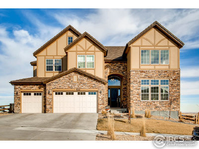 Arvada Single Family Home For Sale: 9424 Noble Way