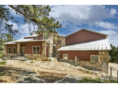 Loveland Single Family Home For Sale: 729 Sawmill Rd