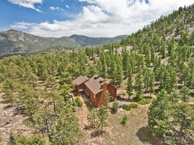 Estes Park CO Single Family Home For Sale: $950,000
