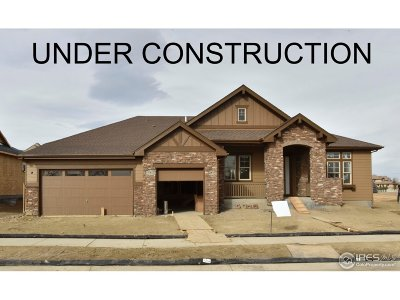 Longmont Single Family Home For Sale: 4014 Somerset Ct