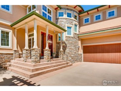 Lafayette Single Family Home For Sale: 715 Skywalker Pt