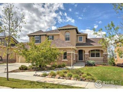 Erie Single Family Home For Sale: 2856 Eagle Cir