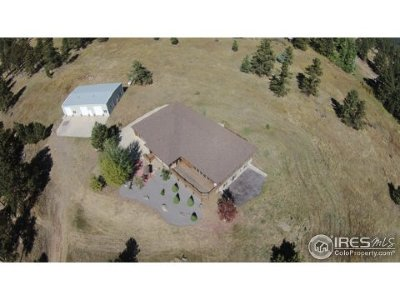 Drake Single Family Home For Sale: 121 Bandit Rock Rd
