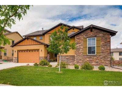Erie Single Family Home For Sale: 620 Benton Ln