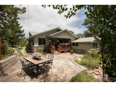 Estes Park Single Family Home For Sale: 1042 Lexington Ln