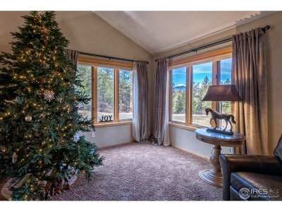Estes Park Single Family Home For Sale: 3333 Rockwood Ln