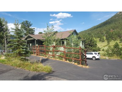 Estes Park Single Family Home For Sale: 1980 Baldpate Ct