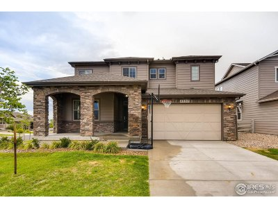 Broomfield Single Family Home For Sale: 2537 Prospect Ct