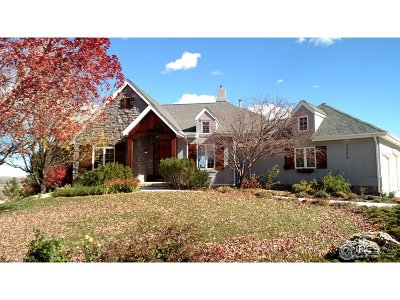 Fort Collins Single Family Home For Sale: 3958 Aerie Ln