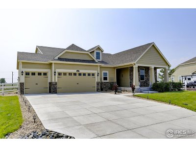 Longmont Single Family Home For Sale: 3377 Birch Rd