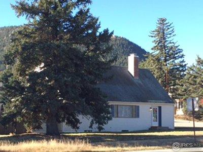 Estes Park Single Family Home For Sale: 1030 N Saint Vrain Ave
