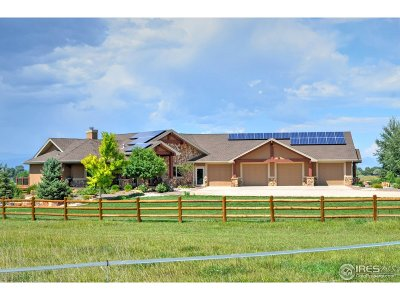 Fort Collins Single Family Home For Sale: 387 Sadie Cove Ct