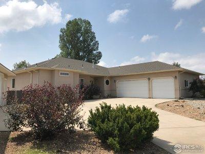Loveland Single Family Home For Sale: 3919 Hammans Ct