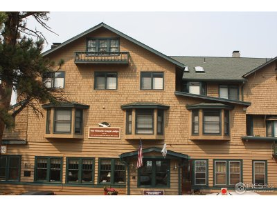 Estes Park Condo/Townhouse For Sale: 300 E Riverside Dr #307