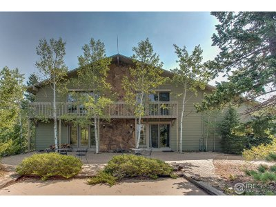 Golden Single Family Home For Sale: 29373 Spruce Canyon Dr