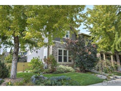 Longmont Single Family Home For Sale: 534 Peregrine Cir