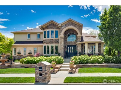 Longmont Single Family Home For Sale: 1314 Onyx Cir