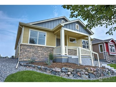 Longmont Single Family Home For Sale: 1510 Moonlight Dr