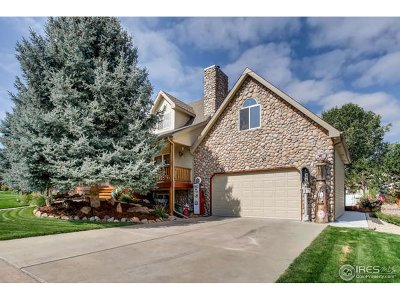 Weld County Single Family Home For Sale: 917 52nd Ave