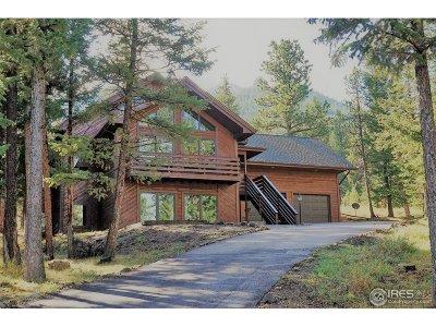 Estes Park CO Single Family Home For Sale: $725,000