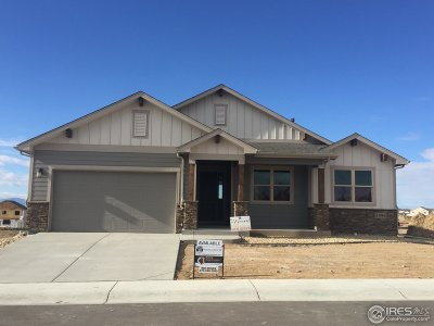 Weld County Single Family Home For Sale: 5590 Maidenhead Dr