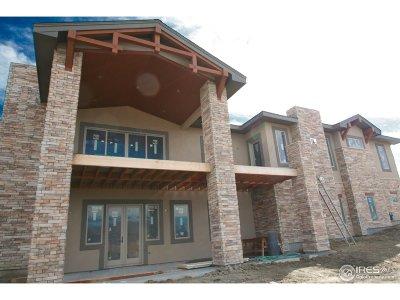 Castle Rock Single Family Home For Sale: 1363 Hardrock Pl