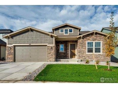 Erie Single Family Home For Sale: 948 Dinosaur Dr
