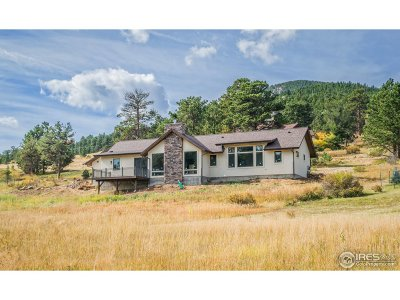 Estes Park CO Single Family Home For Sale: $749,000