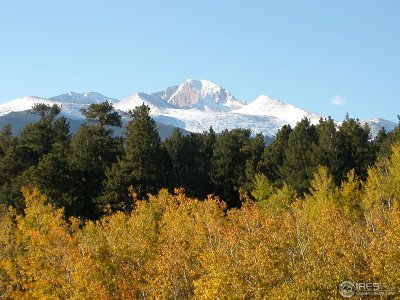 Estes Park Condo/Townhouse For Sale: 1565 Colorado Hwy 66 #5