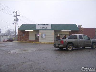 Holyoke Commercial For Sale: 130 W Denver St