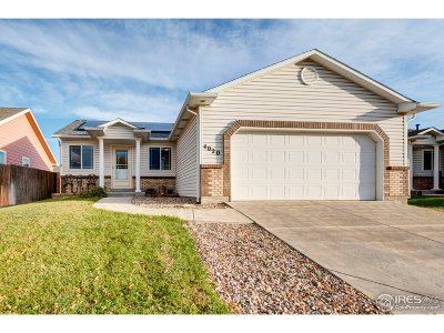 Fort Collins Single Family Home For Sale: 4020 Bracadale Pl