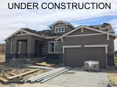 Broomfield Single Family Home For Sale: 3176 Blue Mountain Dr