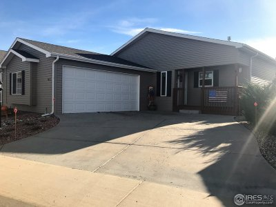 Fort Collins Single Family Home For Sale: 4479 Quest Dr