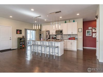 Golden Single Family Home For Sale: 16407 W 13th Ln
