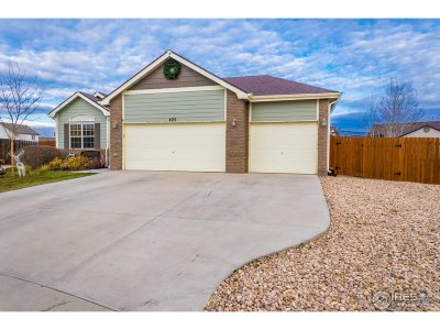 Single Family Home For Sale: 425 Apple Ct