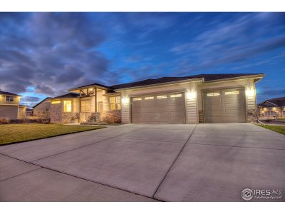 Greeley Single Family Home For Sale: 7801 Skyview St