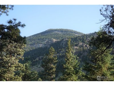Estes Park Residential Lots & Land For Sale: 1481 David Dr