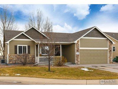 Loveland Single Family Home For Sale: 2166 Blue Duck Ct