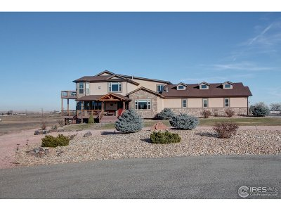 Berthoud Single Family Home For Sale: 302 Dove Ln