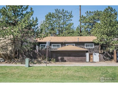 Estes Park Single Family Home For Sale: 286 Moraine Ave