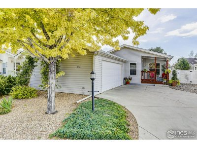 Fort Collins Single Family Home For Sale: 858 Vitala Dr