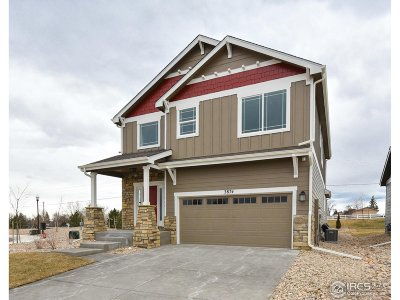 Larimer County Single Family Home For Sale: 3874 Adine Ct