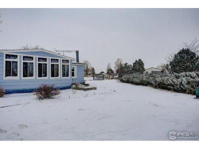 Weld County Single Family Home For Sale: 611 Pinyon Cir