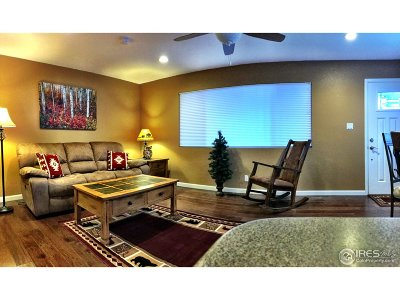 Estes Park Condo/Townhouse For Sale: 1250 S Saint Vrain Ave #1